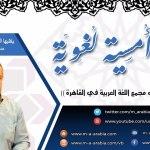 """محاضرة """"من اتجاهات قرارات مجمع اللغة العربية في القاهرة"""" لـ أ.د. ياسين أبو الهيجاء"""